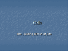 Cells - The Building Blocks of Life Presentation