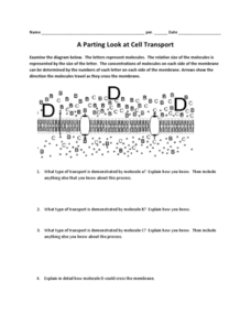 A Parting Look at Cell Transport Worksheet for 7th - 12th ...