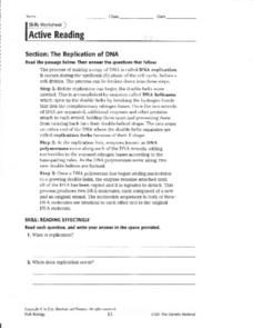 Section: The Replication of DNA Worksheet