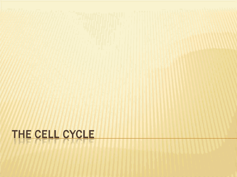 The Cell Cycle Presentation