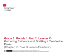 "Gathering Evidence and Drafting a Two-Voice Poem (Chapter 13: ""Los Duraznos/Peaches"") Lesson Plan"