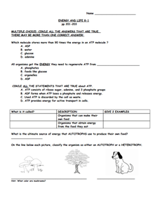 Energy and Life Worksheet
