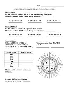 Replication, Transcription and Translation Review Worksheet for ...