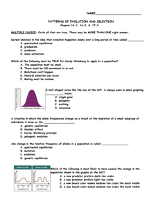 Patterns Of Evolution And Selection Worksheet