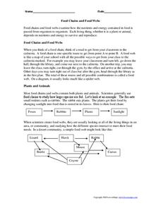 Food Chains and Food Webs Worksheet