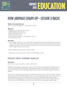 How Animals Shape Up Lesson Plan