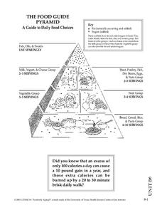 Food Guide Pyramid Worksheet