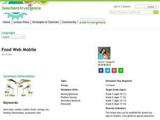 Food Web Mobile Activities & Project