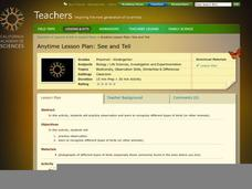 See and Tell Lesson Plan