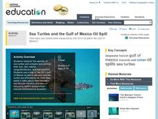 Sea Turtles and the Gulf of Mexico Oil Spill Lesson Plan