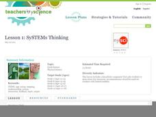Lesson 1: SySTEMs Thinking Lesson Plan