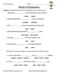 Plural vs Possessive Worksheet