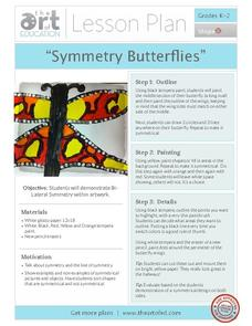 Symmetry Butterflies Activities & Project
