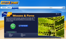 Study Jams! Mosses and Ferns Interactive