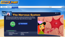 Study Jams! The Nervous System Interactive