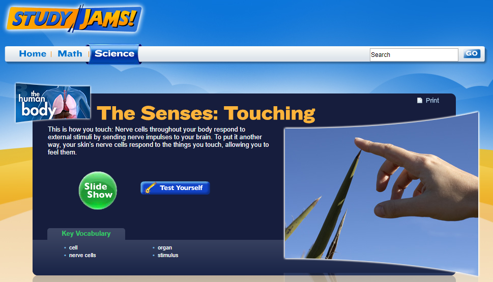Study Jams! The Senses: Touching Interactive