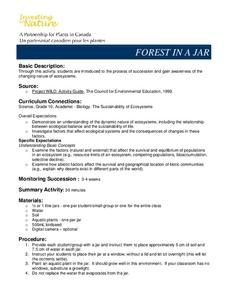 Forest In A Jar Lesson Plan