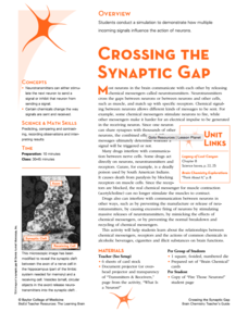 Crossing the Synaptic Gap Lesson Plan