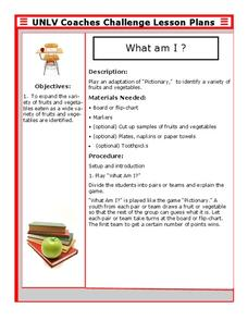 What Am I ? Lesson Plan