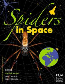 Spiders in Space Unit