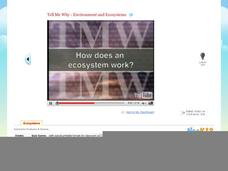 Tell Me Why - Environment and Ecosystems Video