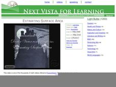 Estimating Surface Area Video