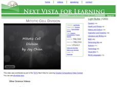 Mitotic Cell Division Video