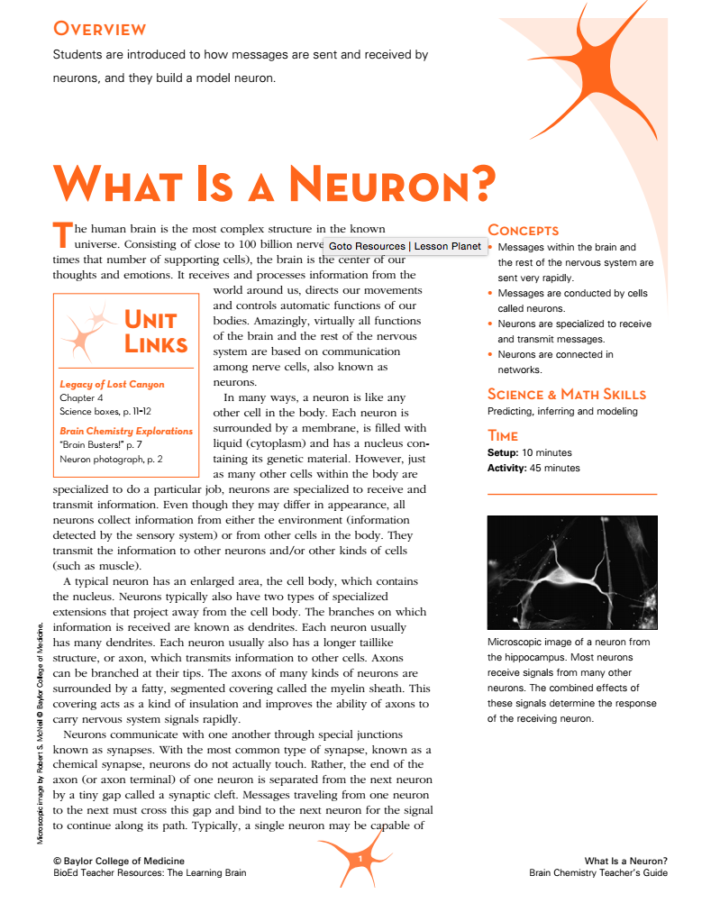 What Is a Neuron? Lesson Plan
