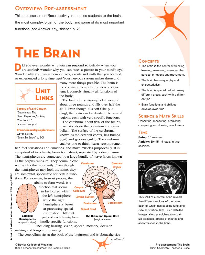 Pre-Assessment: The Brain Lesson Plan for 6th - 12th Grade