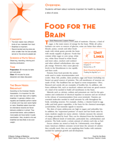 Food for the Brain Lesson Plan