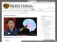 Learning and Memory Video