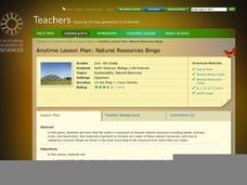 Natural Resources Bingo Lesson Plan