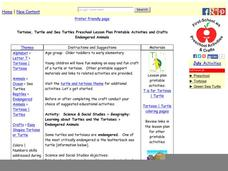 Turtle and Tortoise Preschool Lesson Plan Lesson Plan