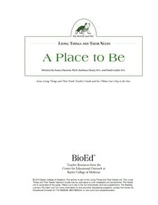 A Place to Be Lesson Plan
