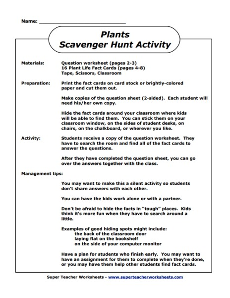 Plants Scavenger Hunt Activity Activities & Project
