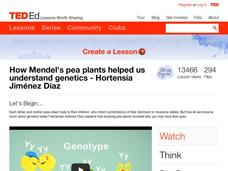 How Mendel's Pea Plants Helped Us Understand Genetics Video