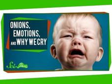 Onions, Emotions, and Why We Cry Video