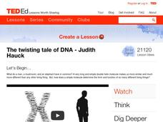 The Twisting Tale of DNA Video