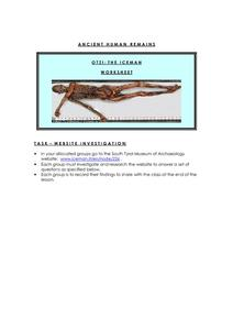 Otzi: The Iceman Worksheet Graphic Organizer