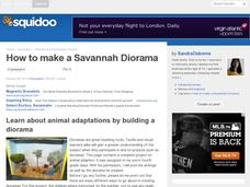 How to Make a Savanna Diorama Activities & Project