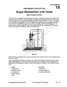 Sugar Metabolism with Yeast Activities & Project
