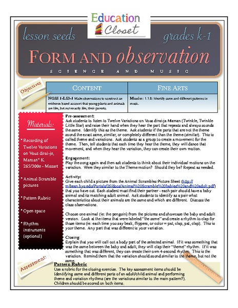 Form and Observation Lesson Plan