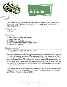 The Eggs Files Activities & Project