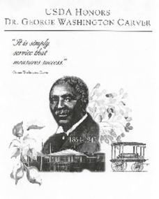 George Washington Carver Coloring and Activity Book Worksheet