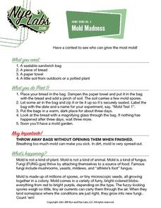 Mold Madness Activities & Project