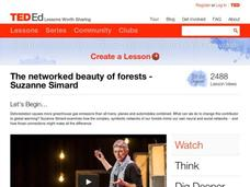 The Networked Beauty of Forests Video
