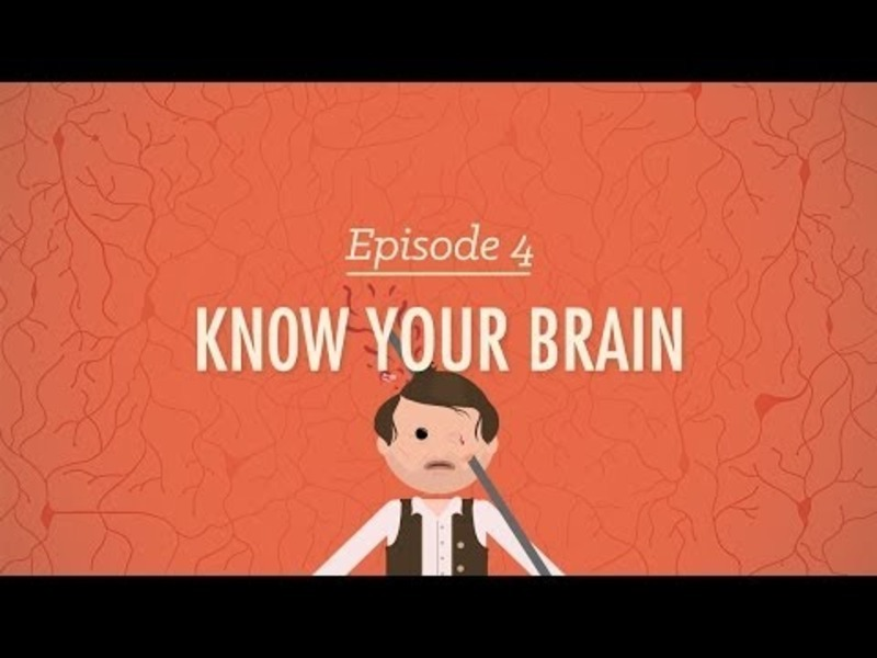 Meet Your Master: Getting to Know Your Brain Video