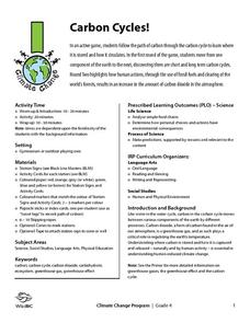 Carbon Based Molecules Lesson Plans & Worksheets Reviewed by Teachers