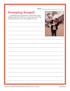 Swooping Seagull Writing Prompt