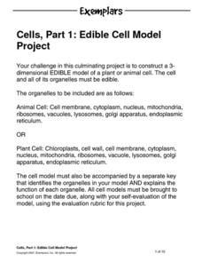 Edible Cell Model Project Activities & Project